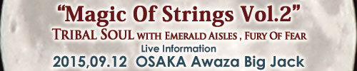 Magic Of Strings Vol.2 | TRIBAL SOUL 物販情報